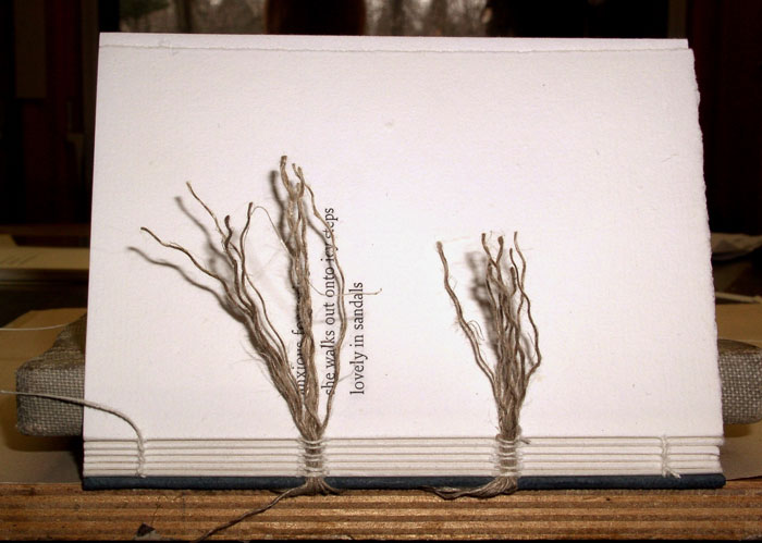 the book is sewn on frayed linen cords